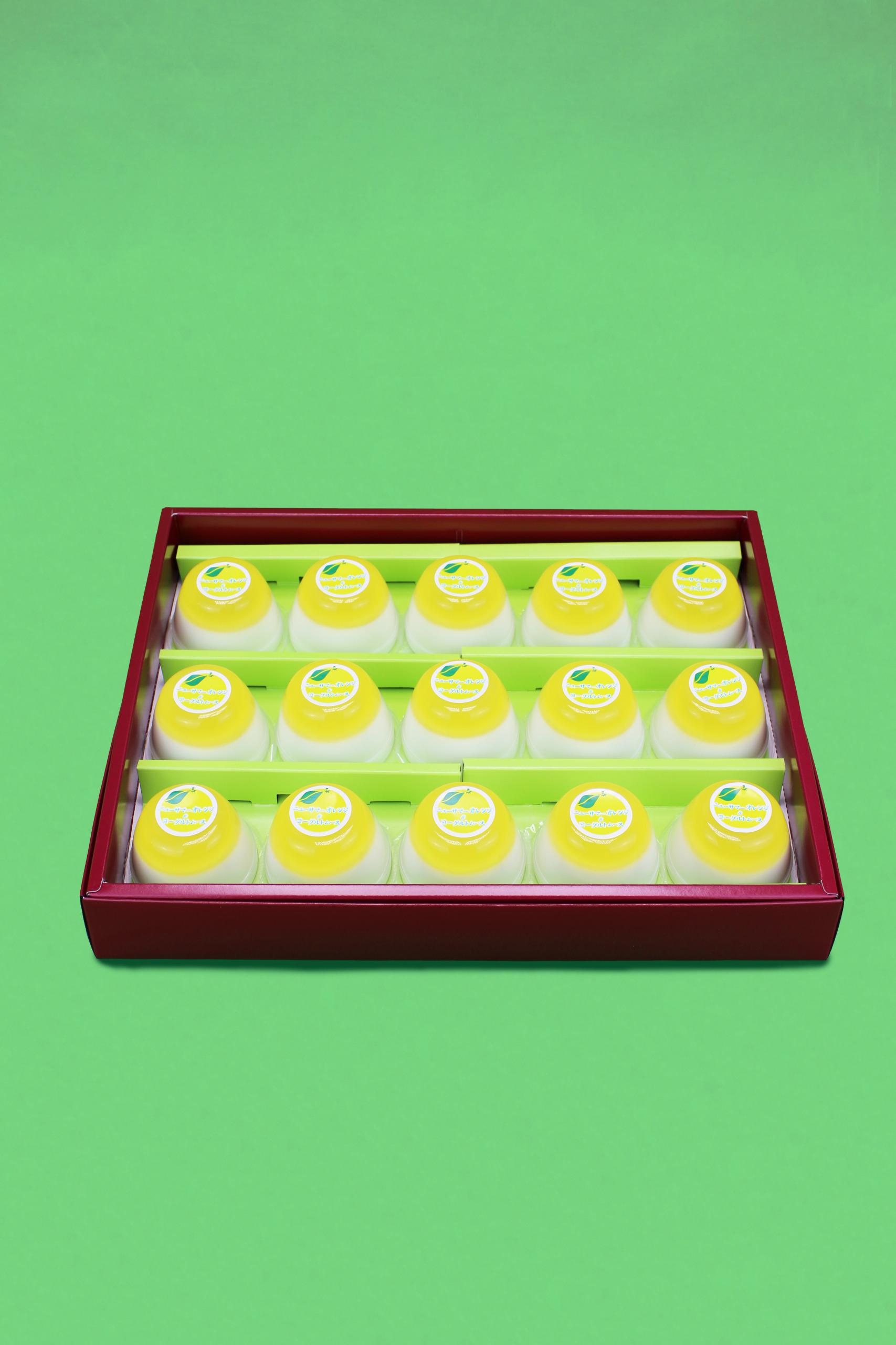 ニューサマーオレンジヨーグルトムース15個入り