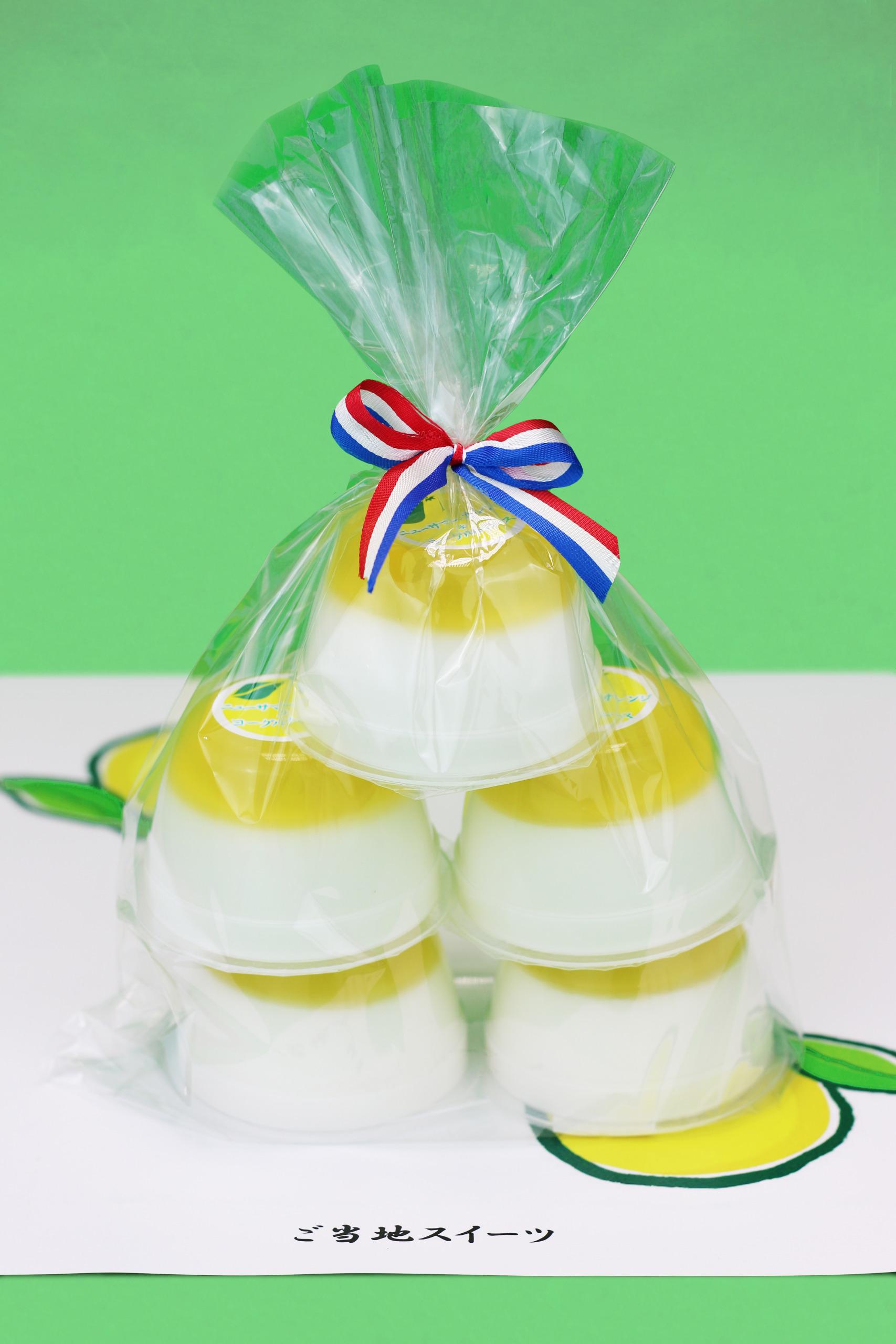 ニューサマーオレンジヨーグルトムース袋入り(5個)
